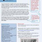 2017 NCPO Nuclear Ban briefing VF ed